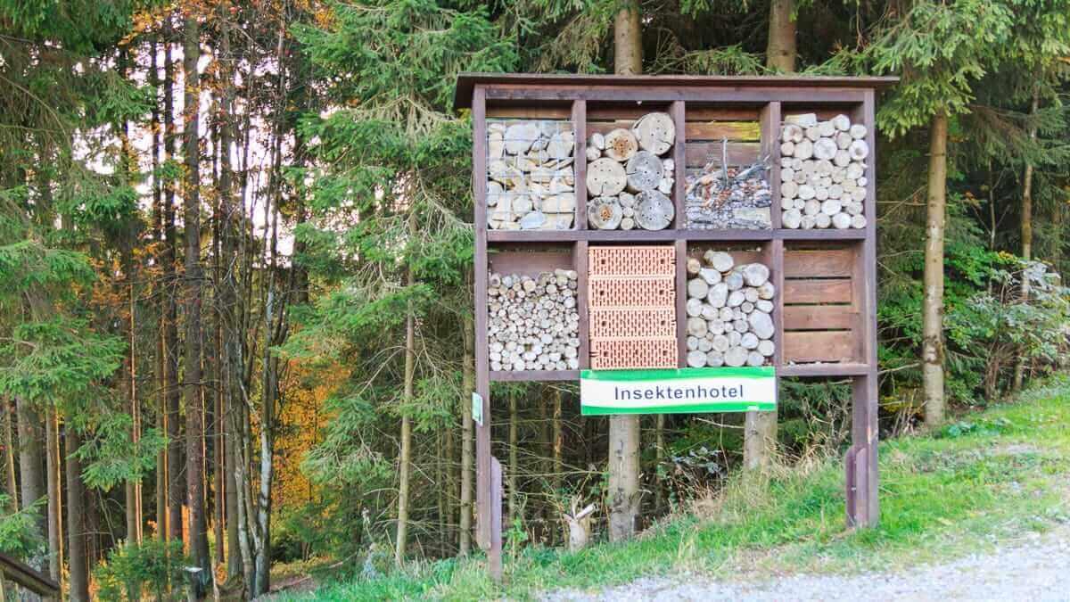 Ein Insektenhotel ist etwas Regionales typisch Sauerland