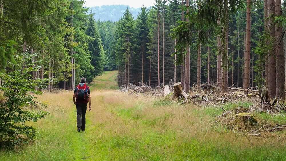 Ein Mann beim Wandern im Sauerland