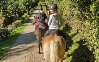 Mit den Pferden in die Natur beim Freizeitreiten im Sauerland