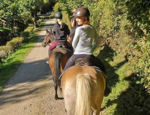 Freizeitreiten im Sauerland Herbst