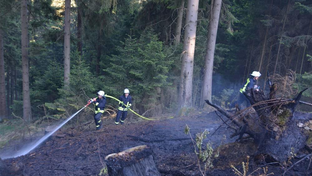 Koordination beim Löschen eines Waldbrands