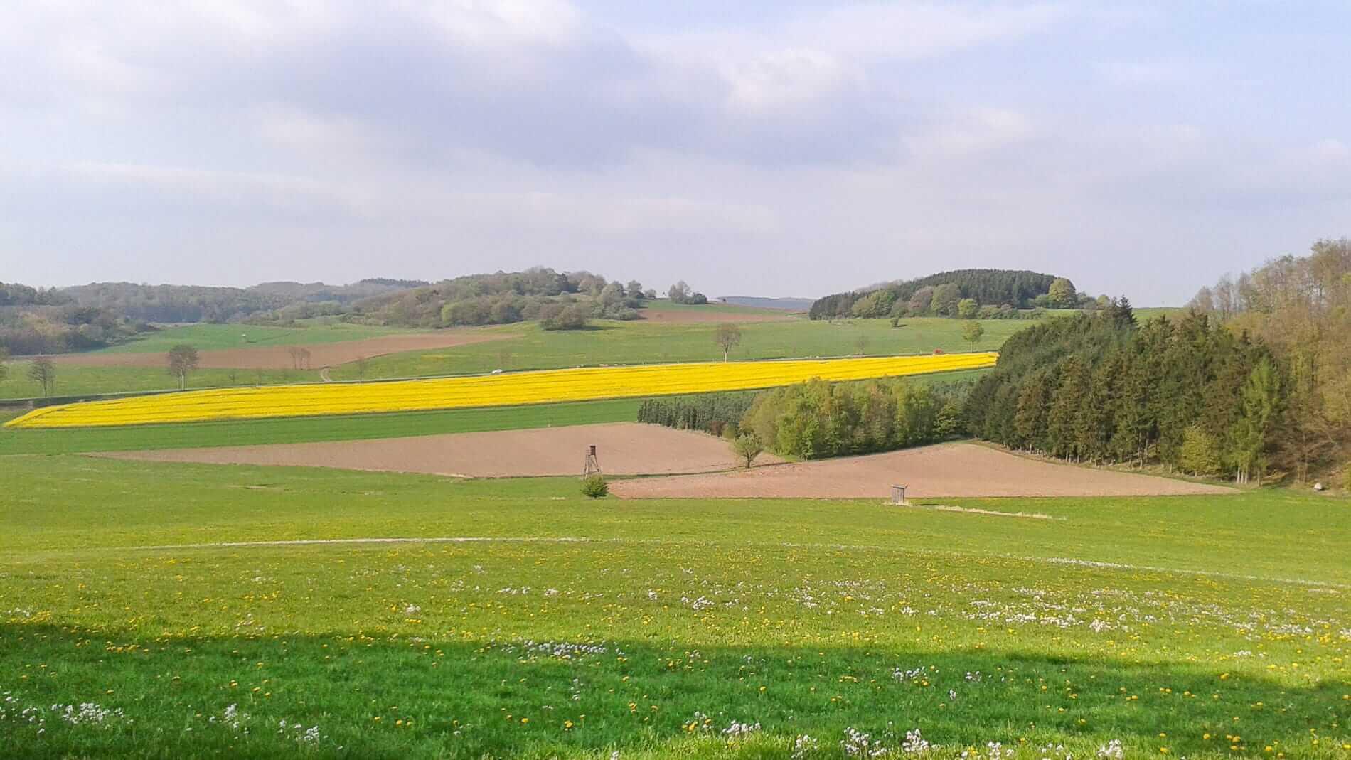 Zusammenarbeiten ist mit Heimatliebe Sauerland moeglich