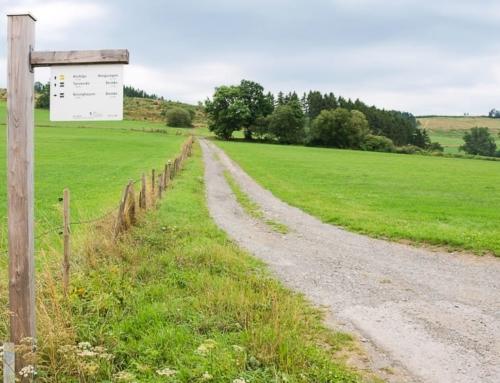 Der Deutsche Wandertag 2019 im Sauerland