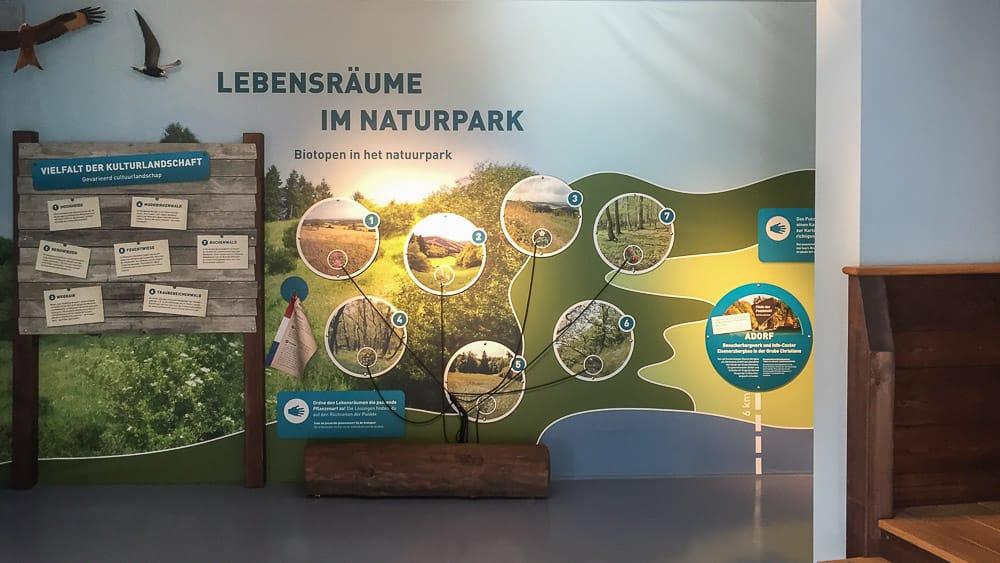 Lebensraum Naturpark im Visionarium Diemelsee