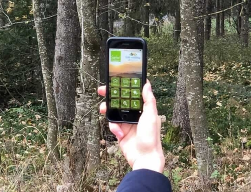 Sauerland App: Dein Begleiter auf dem Smartphone