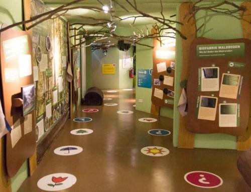 Visionarium Diemelsee: Die Natur der Region interaktiv erleben