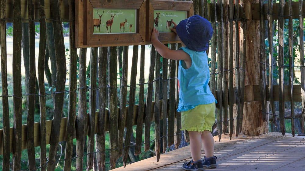 Zoos und Wildparks mit der Ruhr Topcard