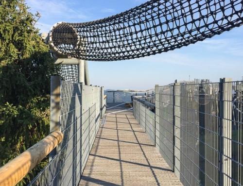 Panorama Erlebnisbrücke: Ein Ausflug mit Nervenkitzel und Aussicht