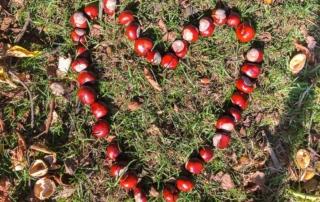 Ausflugsziele im Sauerland Herbst